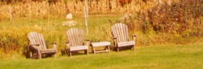 Fall Foliage chairs